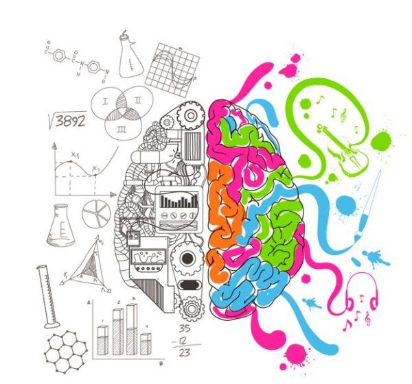 analytical-creative-brain_23-2147506845